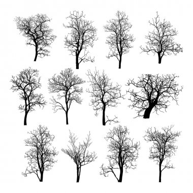 Dead Tree without Leaves Vector Illustration Sketched clip art vector