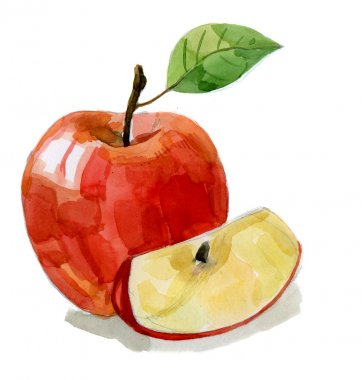 Watercolor hand drawn red apple