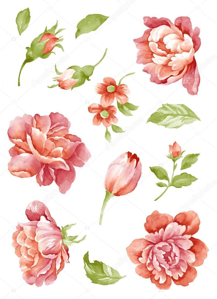Watercolor illustration0404