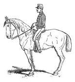 Rassembler, eine Übung, die die Beweglichkeit des Pferdes erhöhen soll