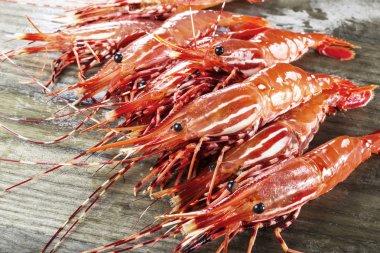 Pile of live shrimp on fishing Dock
