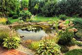 Fotografie Landscape design