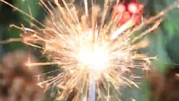 Vánoční strom, červený míček a osvětlené prskavka