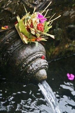 Tirta Empul Holy Water