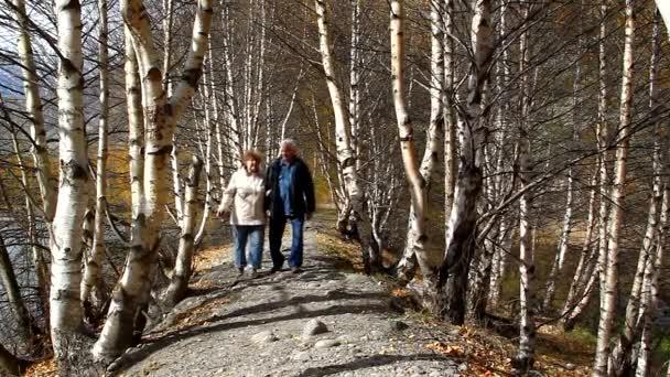 šťastný starší pár procházky v lese, usmívající se, mluví
