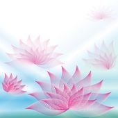 Hintergrund mit Lotusblumen