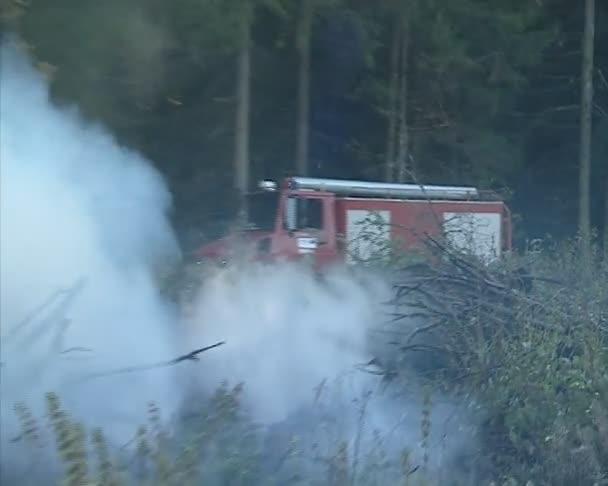 požární auto a hasič hašení ohně.