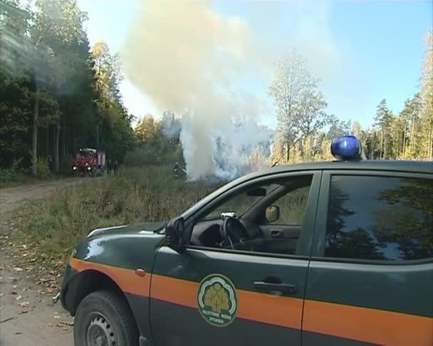 požární stroj a hasič hašení ohně