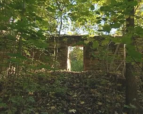 mírně otevřené dveře staré zdi a opuštěné zahradě