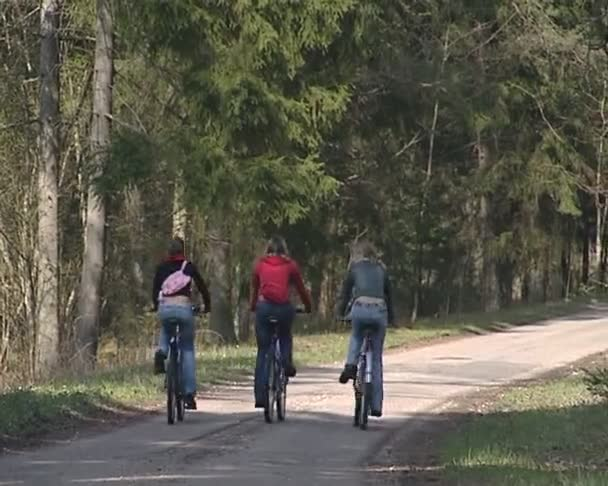 Thee cycling females traveling in forest. rest active in nature.