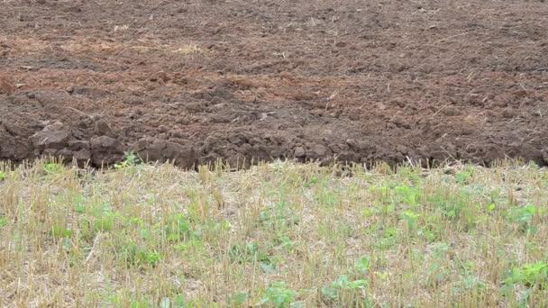 traktor pluh kola půdy
