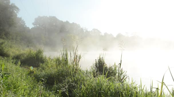 river water fog mist