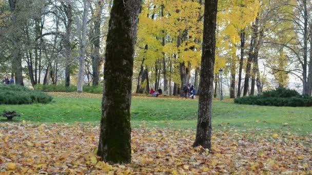 relax rest colorful autumn park. couple sit bench walk