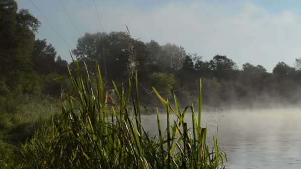 morning sunrise reflection mist fog rise flow river water