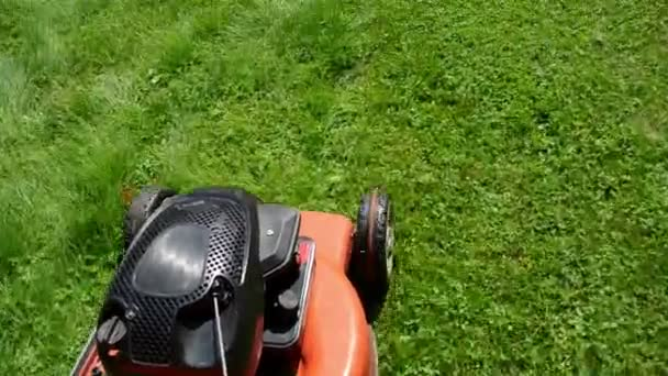 walk move cut grass lawn mower cutter garden meadow