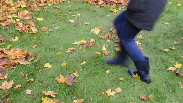 nő shake fa ága levelek őszi színes levelek lehullanak