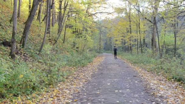 muž sportovec atlet běh krásnou podzimní park road zdravé