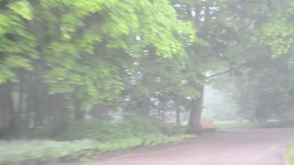 jednotka husté mlhy parkoviště