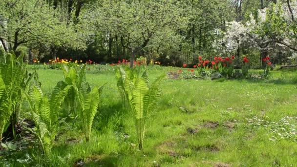 žena jarní zahrada