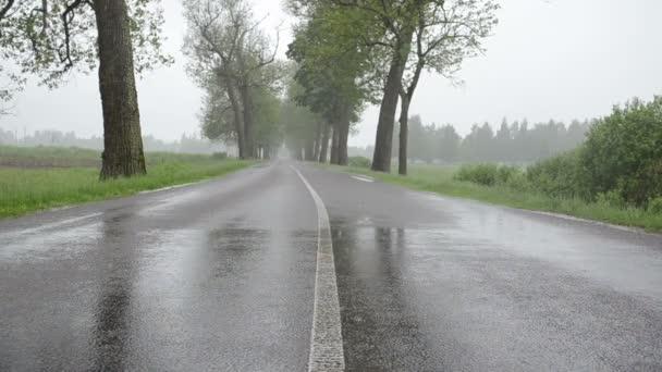 dešťová voda na asfaltu