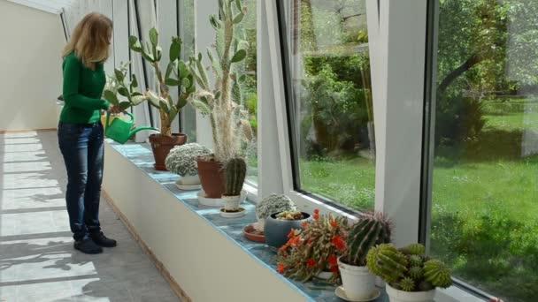 vod kaktus dívka