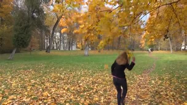 Woman shake autumn tree