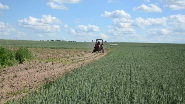 traktor pluh rostliny