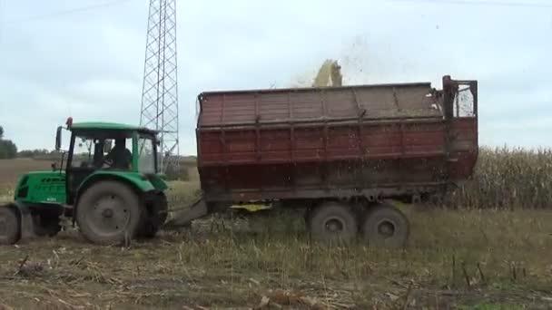 kukorica vágott traktor pótkocsi