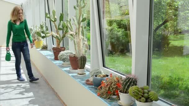 zalévání kaktusů mohou
