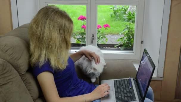 Frau Laptop Katzensessel