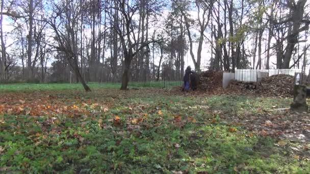 nő előkészíti a komposzt