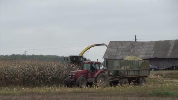 kombinovat sklizeň kukuřice