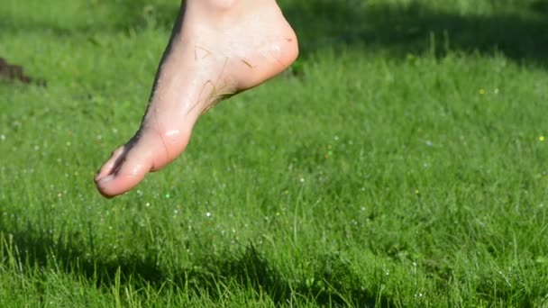 vlhké nohy trávy