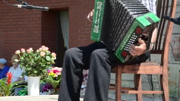 fesztivál harmonika nyári