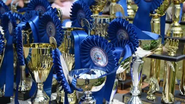 Horse racing cups awards