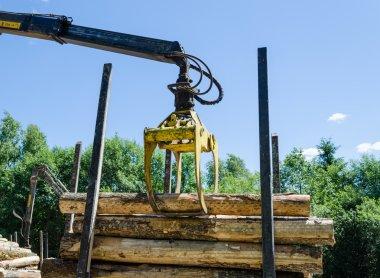 wood machinery cutter loading cut logs on trailer