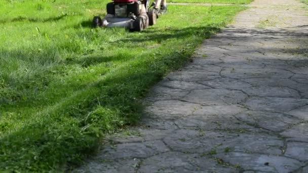 Leg cut grass stone path