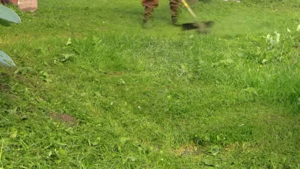 zblízka člověka s sekačky sekání trávy