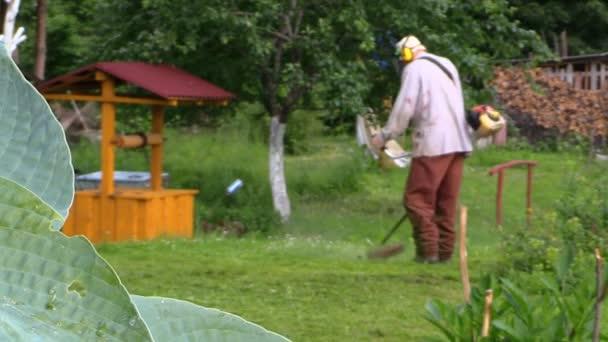 listy rostlin dovnitř vítr a farmář muž posečené trávy. změna zaměření