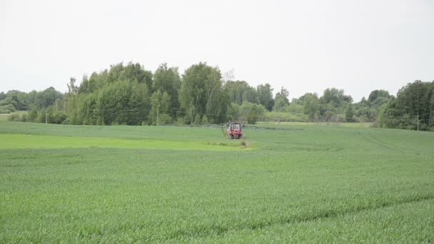 Farm tractor rides young crop to fertilize the fields from pests