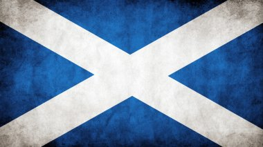 The Scottish flag stock vector