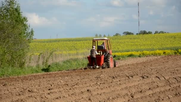 Tractor in the farm planting potatoes