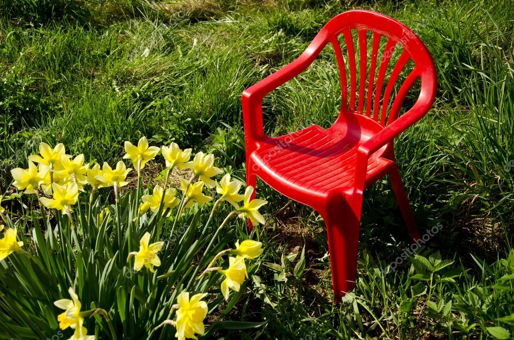silla para niños rojo en primavera y jardín Narciso — Fotos de Stock ...