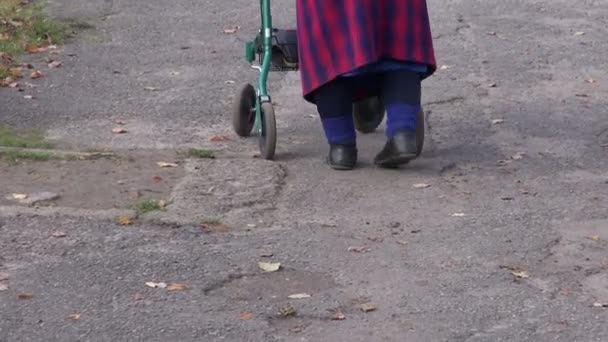 elderly disabled woman with walker walking on pavement
