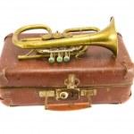 Старый чемодан и vintage духовой музыкальный инструмен
