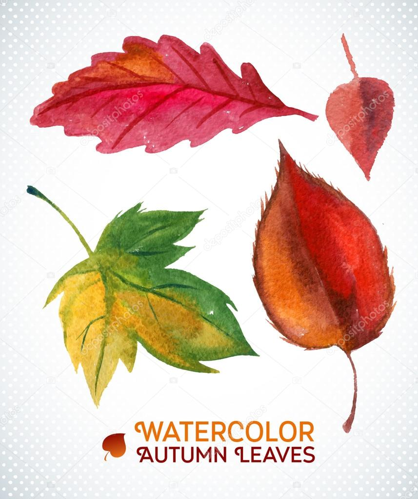 Watercolor autumn leaf set. Vector illustration Collection of watercolor hand drawn leaves.