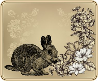 Vintage frame with rabbit, blooming roses and phloxes. Vector il