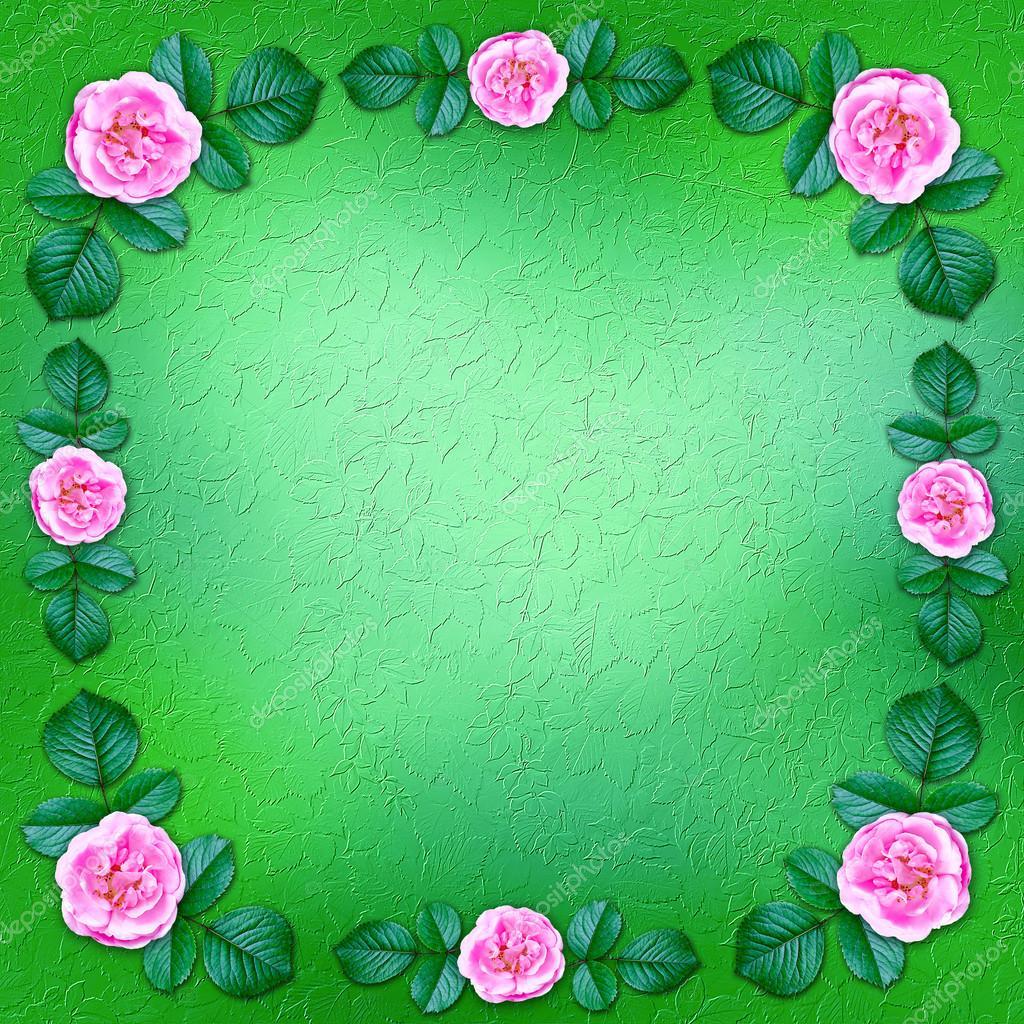 Grüne Blumen Hintergrund umrahmt von blühenden Rosen — Stockfoto ...