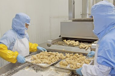 workers in food processing production line