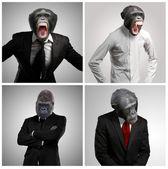 Serie eines Geschäftsmannes mit Affenkopf